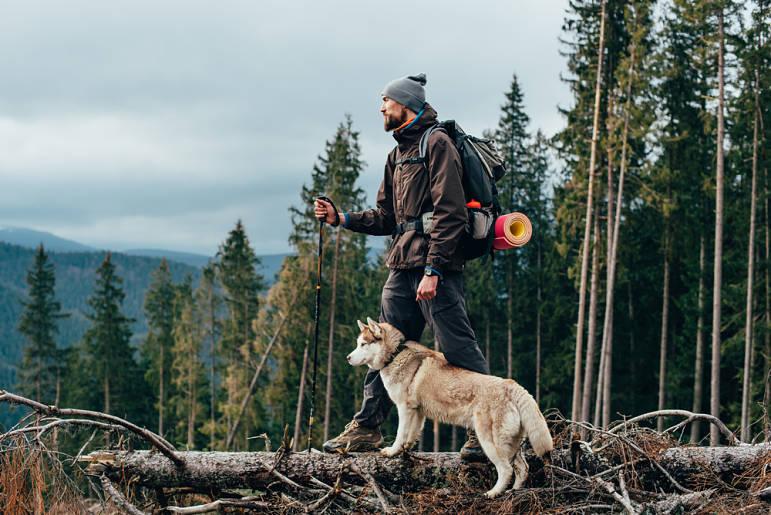 5 rutas de senderismo en Cataluña con perros