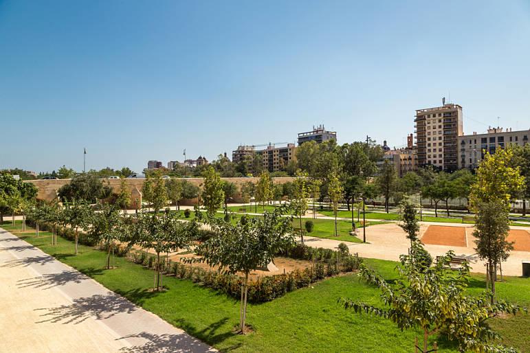 Jardindes del Turia-rutas con perros por Valencia